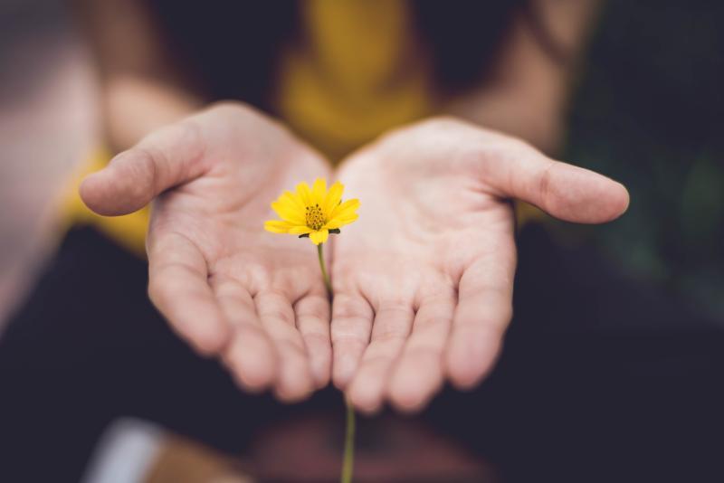 So kannst du das Vertrauen in deine Beziehung wieder aufbauen und fremdgehen verzeihen!